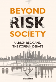 Beyond Risk Society